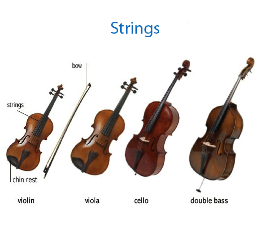 Unit 2 Classroom Lesson: The Instruments of the Orchestra ...